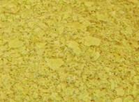 Levure de biere saccharomyces cerevisiae
