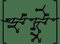 Chondroïtine