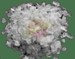 collagène marin posologie
