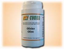 Acheter olivier pour soigner l'hypertension artérielle, achat vente ici