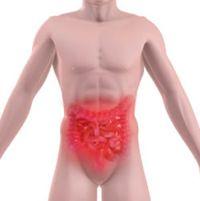 Les différents remèdes de plantes médicinales contre la diarrhée