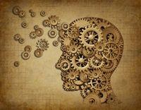 Les fonctions psychologiques et leur solution végétale